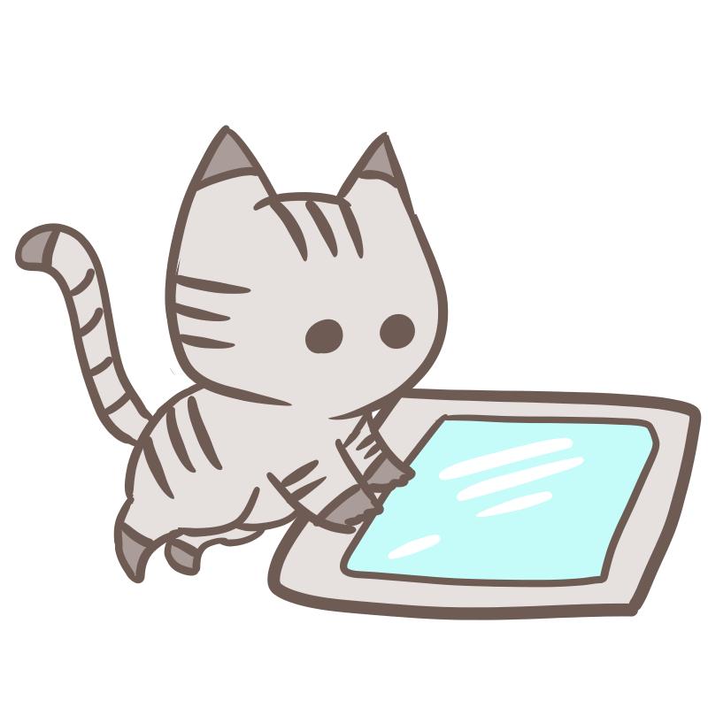 タブレットを使う猫(丸目)