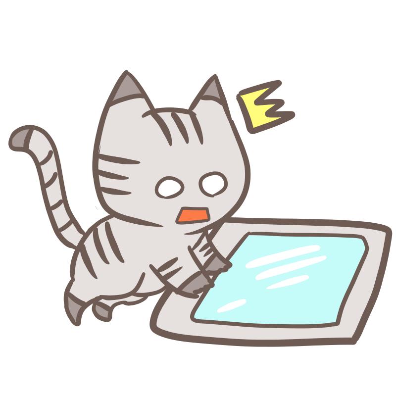 タブレットを使う猫(壊れた)