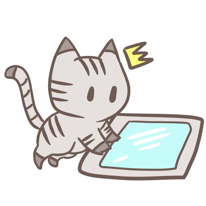 タブレットを使う猫(背景無し)