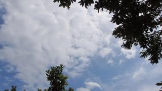 久々の快晴!2015年6月28日(日)の空の写真
