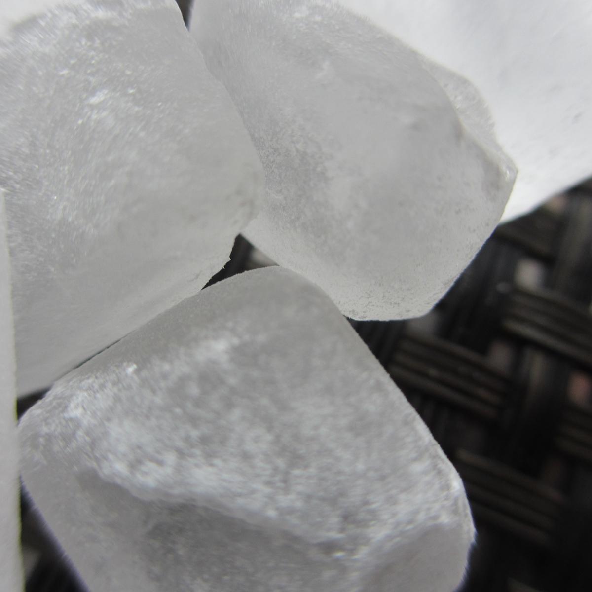 氷砂糖20150628 (44)