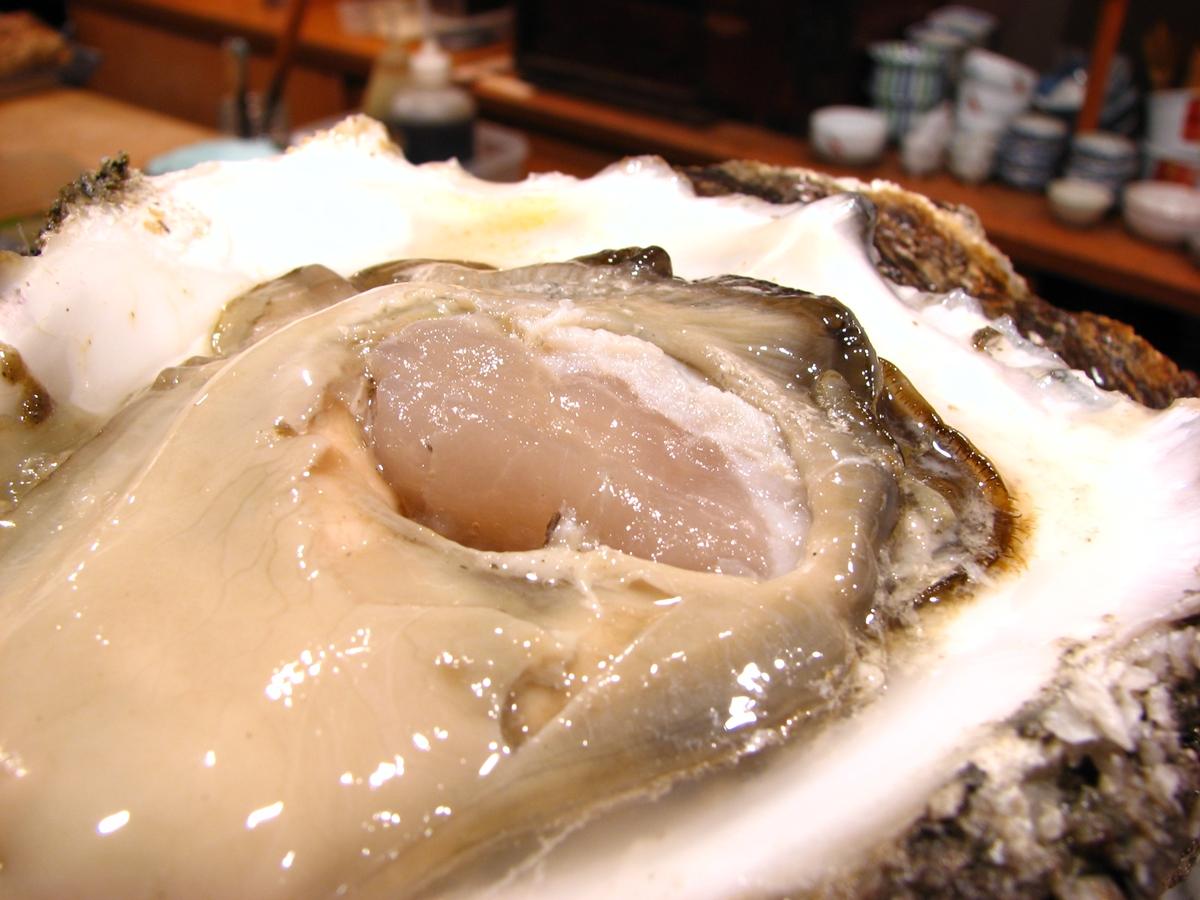 巨大な牡蠣のフリー写真3