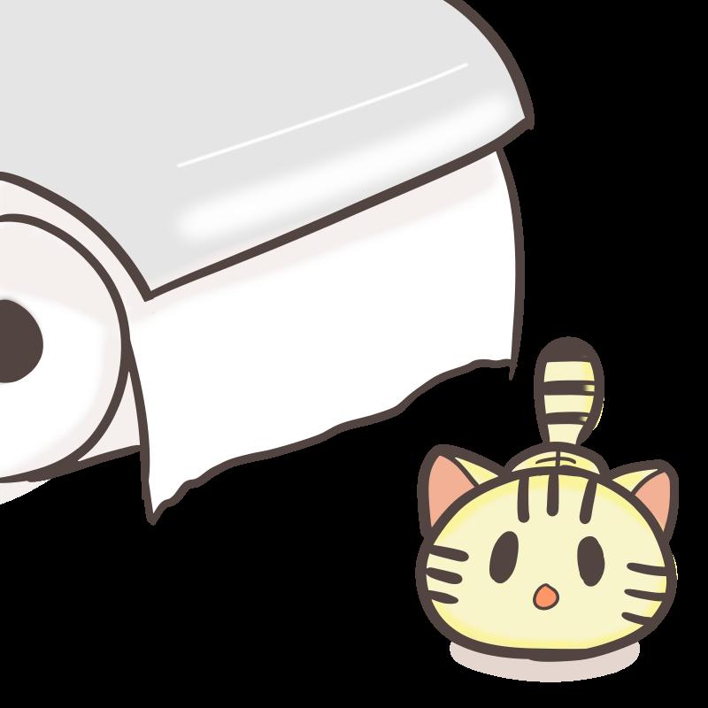 危険な香り...トイレットペーパーを見つめる子猫のフリーイラスト