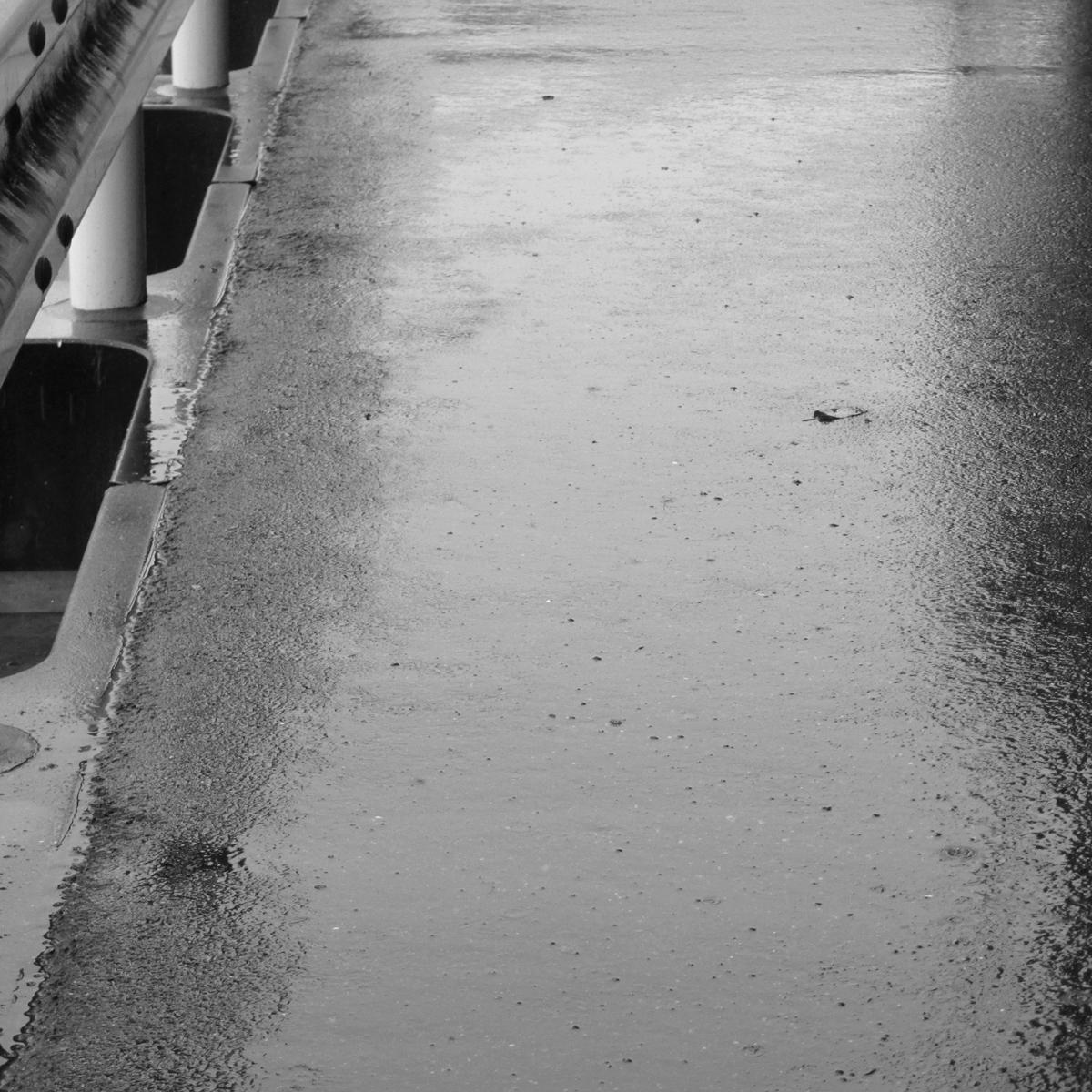 雨の日20150704 (37)
