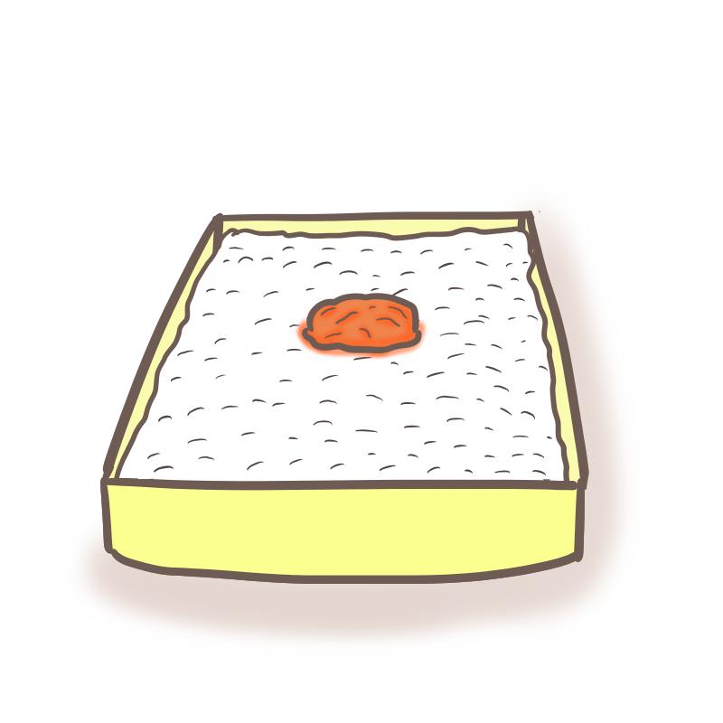 日の丸弁当