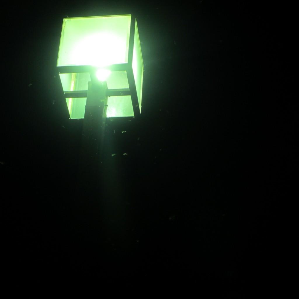 街灯に群がる虫20150710 (1)