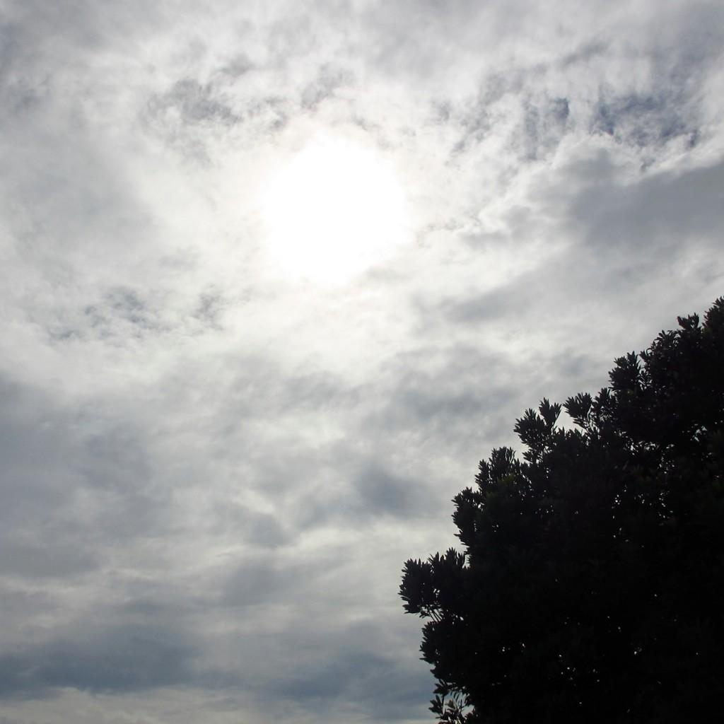 今日の空20150712 (1)