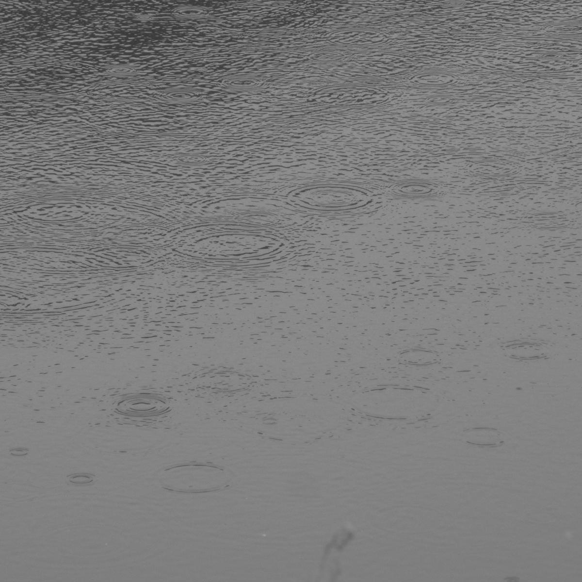雨の日20150704 (4)