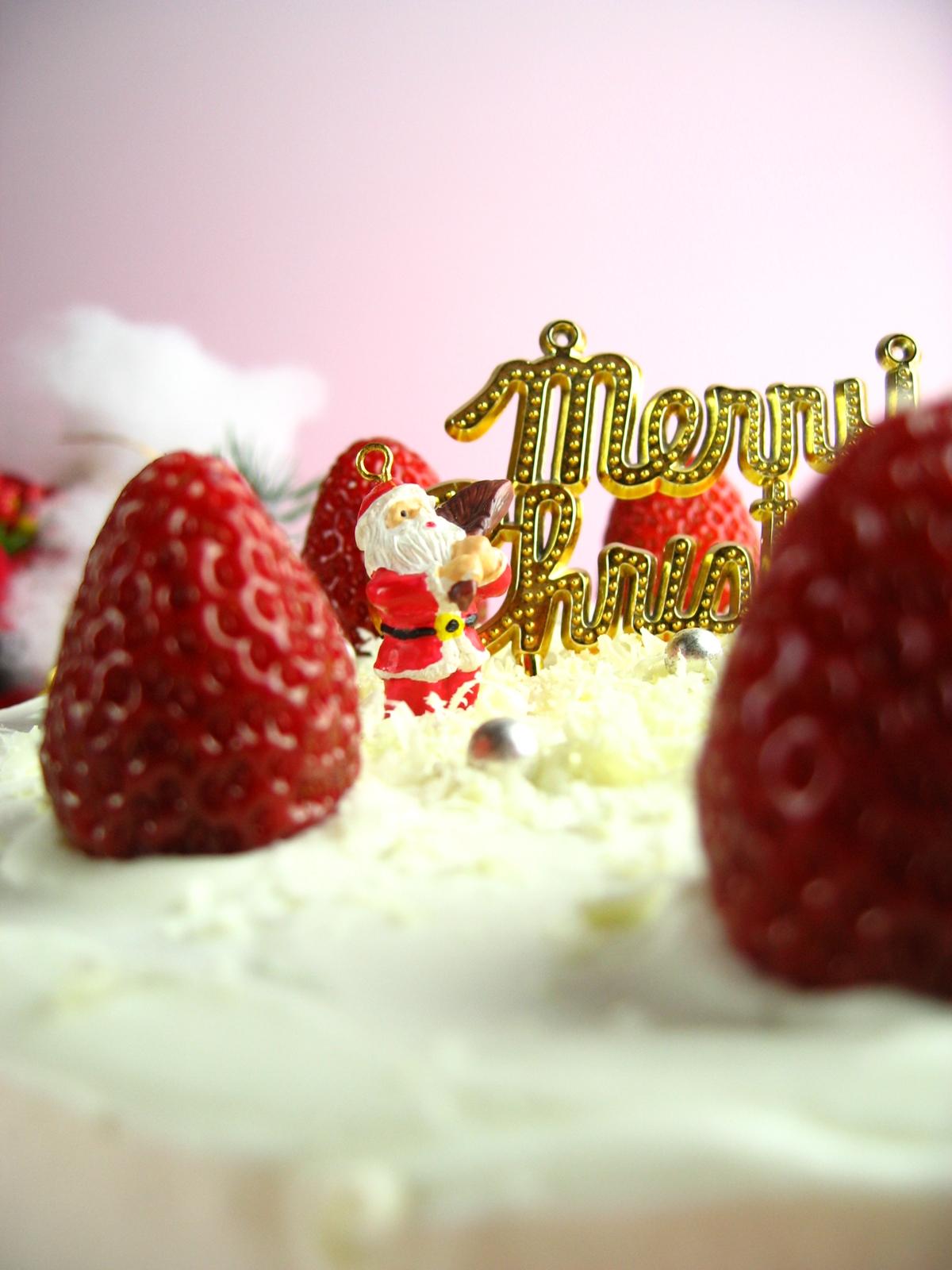 自家製クリスマスケーキoldpicture (8)