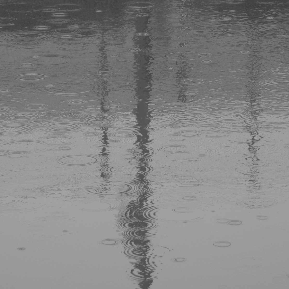 雨の日20150704 (7)