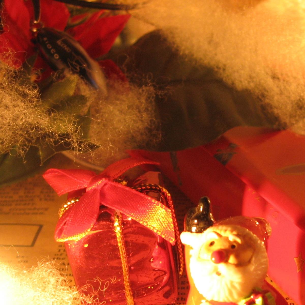 クリスマスイメージ20061219 (7)