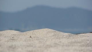 夏の海!砂浜のイメージ無料写真