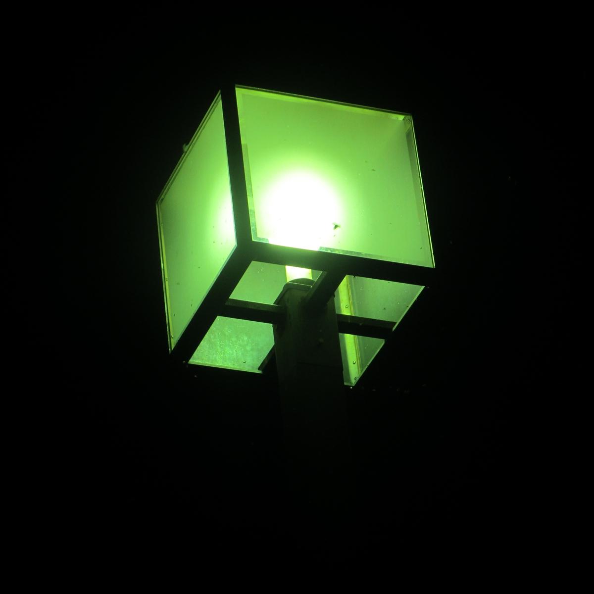 街灯に群がる虫20150710 (6)