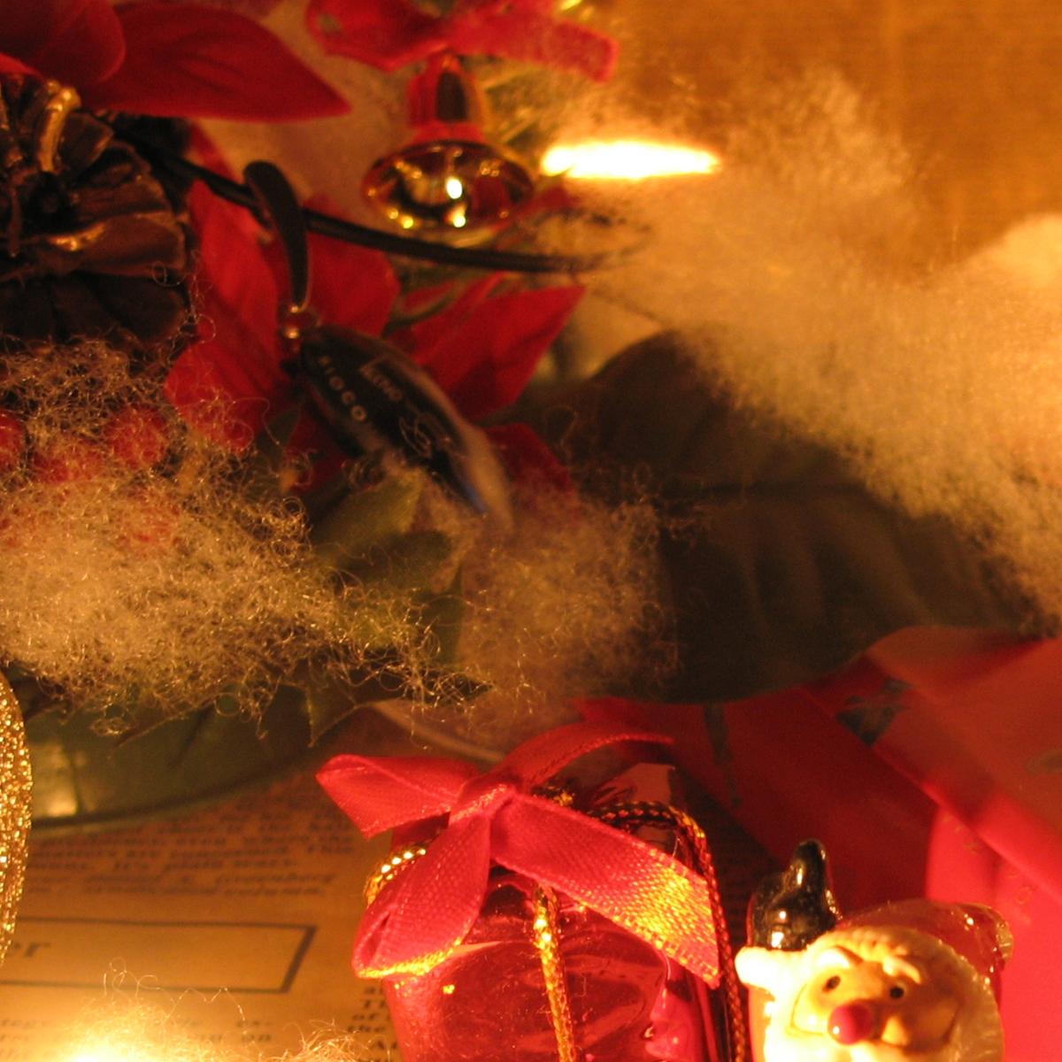 クリスマスイメージ20061219 (6)