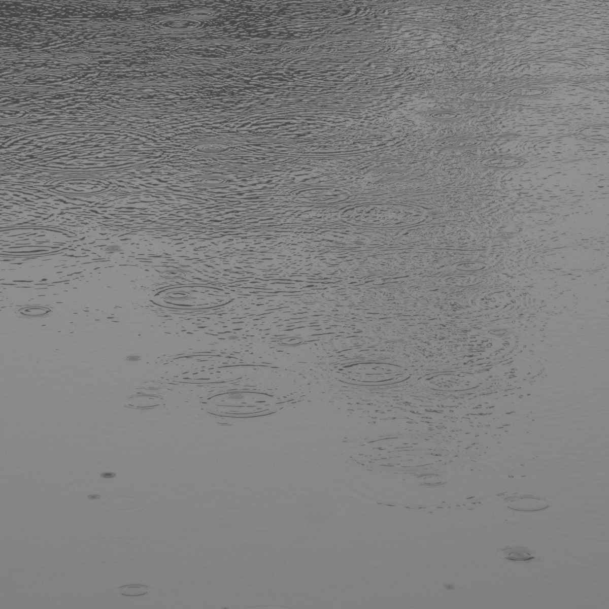 雨の日20150704 (5)