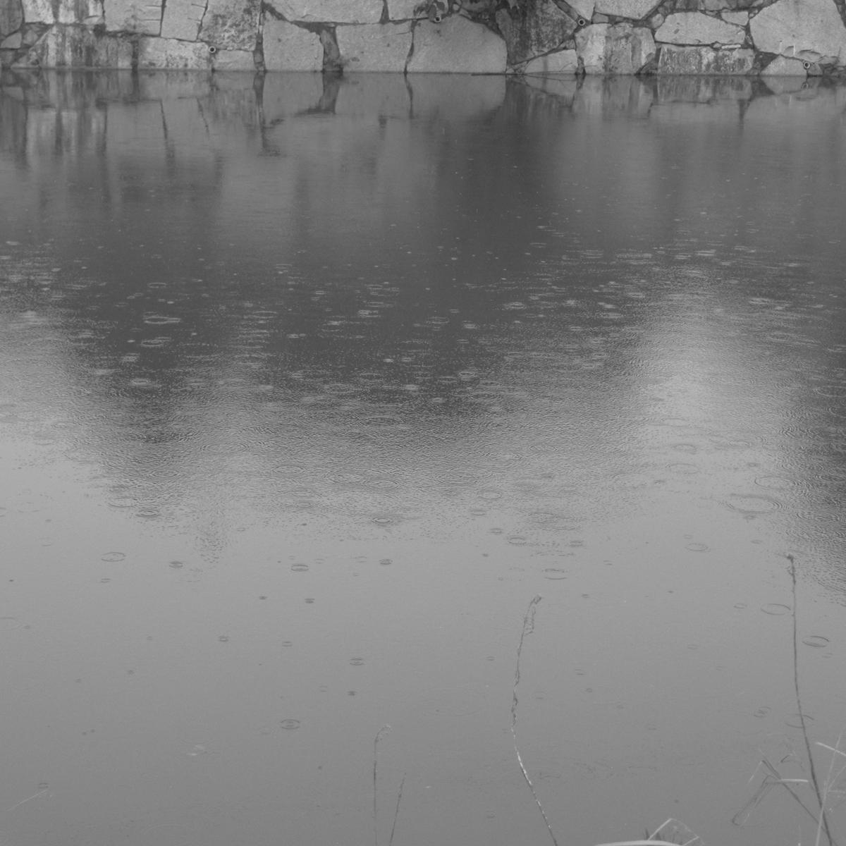 雨の日20150704 (12)