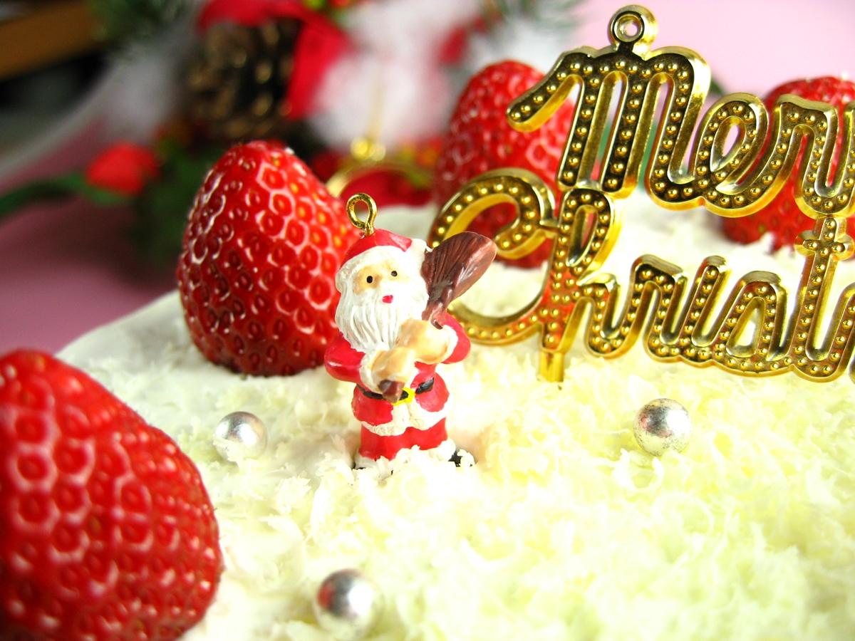 自家製クリスマスケーキoldpicture (6)