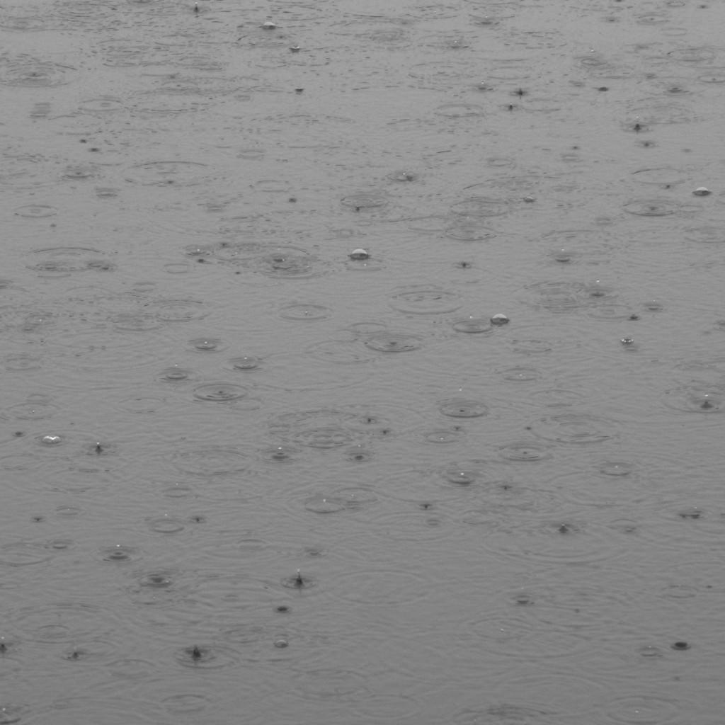 雨の日20150704 (31)