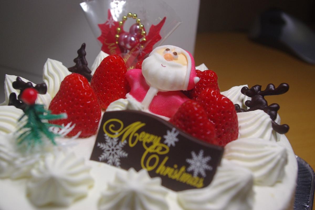 クリスマスケーキ20150706 (1)