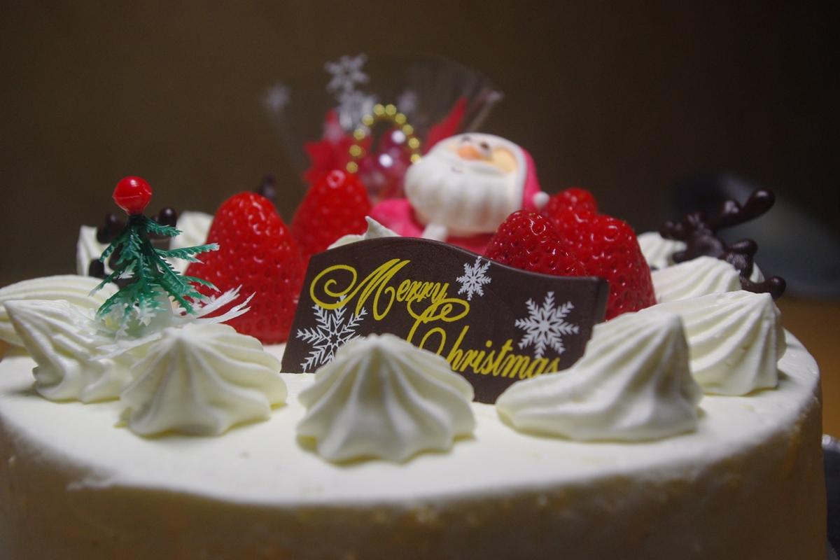 クリスマスケーキ20150706 (2)