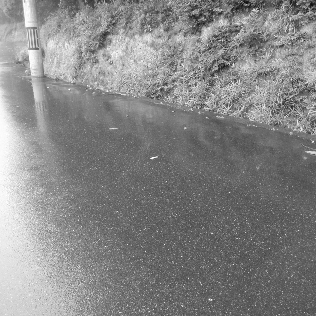 雨の日20150704 (40)