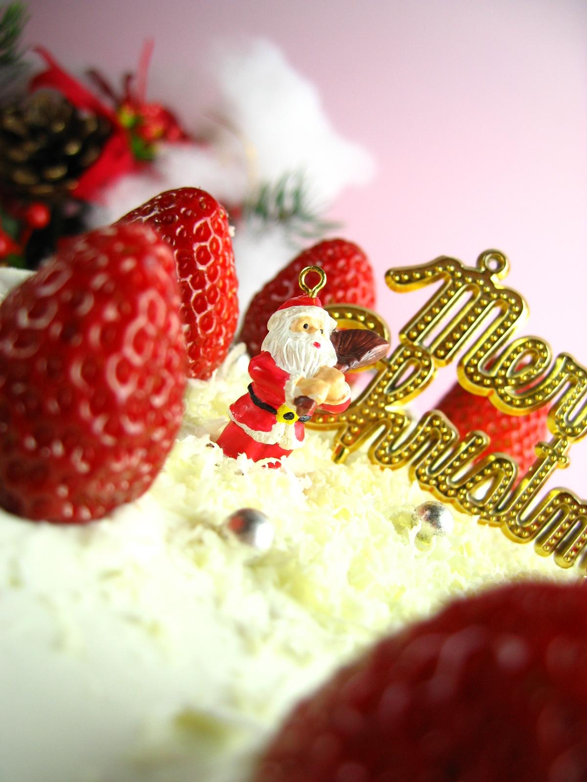 自家製クリスマスケーキoldpicture (9)
